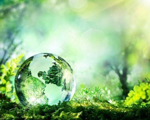 World-Environment-Day-1-1.jpg